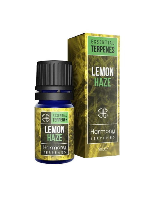 terpeny lemon haze