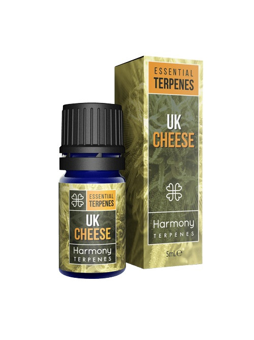 terpeny cheese